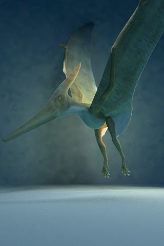 Screenshot Dino Gallery 3D